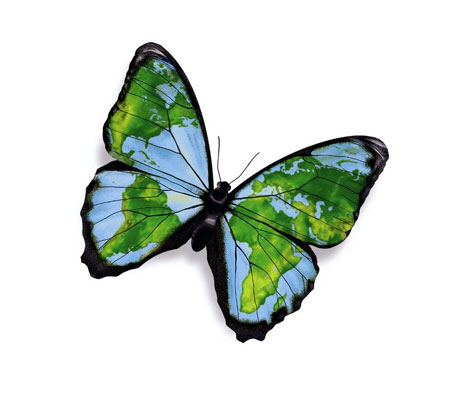 butterfly-world-map